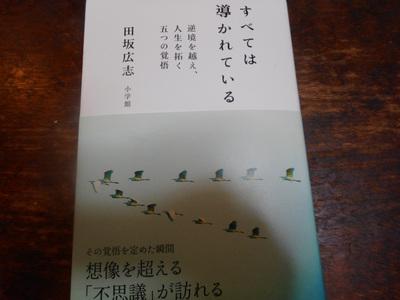 DSCN6401_01.JPG